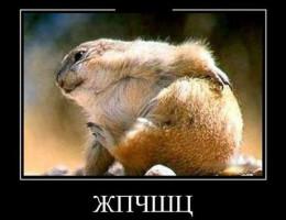 Dolmetscher in Kiew